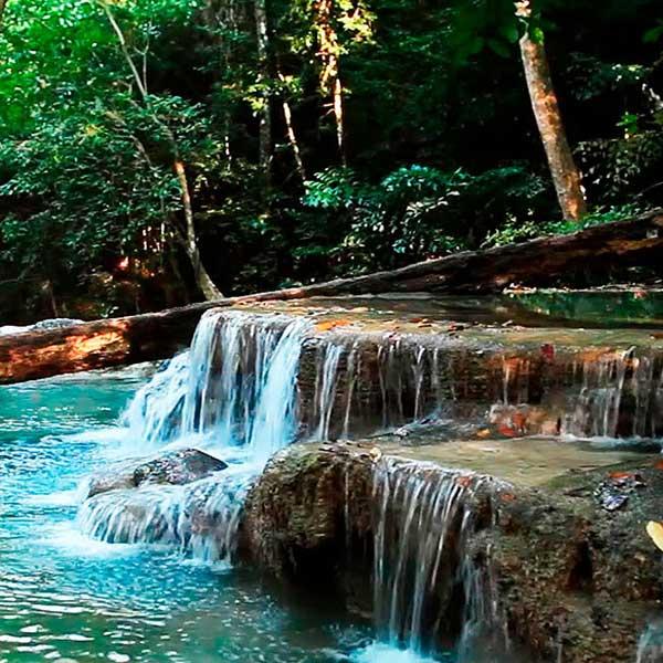 krabi-daily-tours-jungle-tour-hot-spring-waterfall-emerald-pool-3
