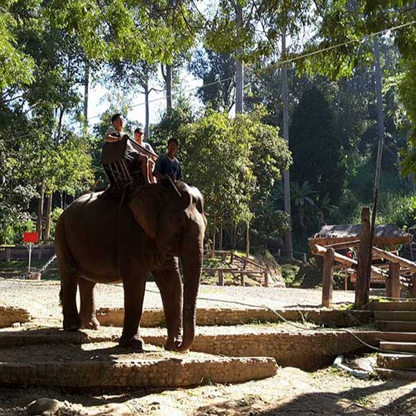 one-day-trip-family-adventure-the-nature-safari-tour-chiang-mai-thailand-5