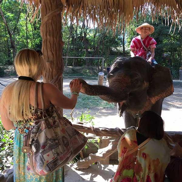 one-day-trip-family-adventure-the-nature-safari-tour-chiang-mai-thailand-6
