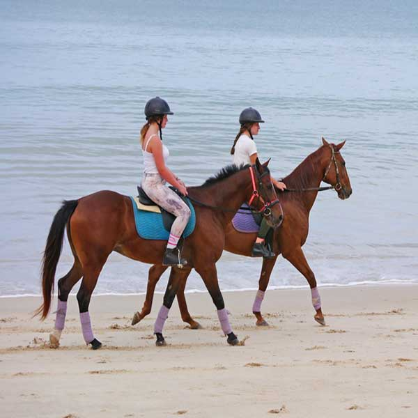 best-fun-family-things-to-do-booking-horse-club-riding-on-the-beach-phuket-5