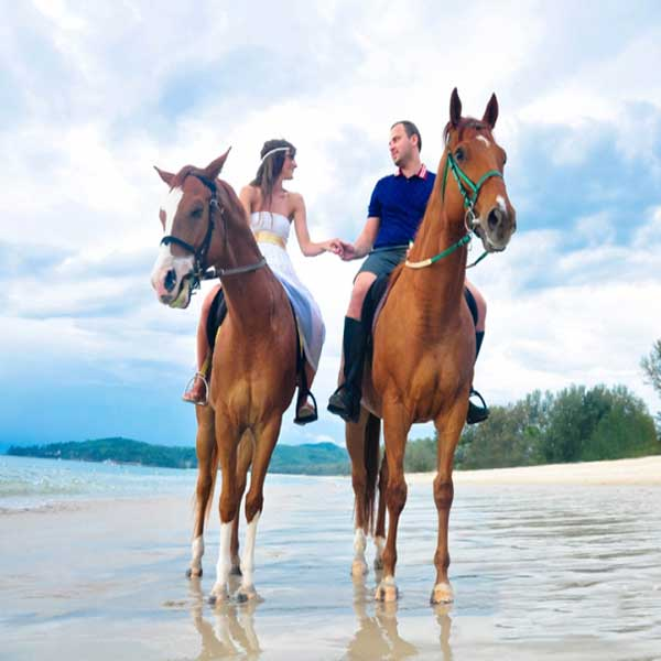 best-fun-family-things-to-do-booking-horse-club-riding-on-the-beach-phuket-7