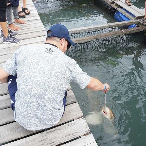 phuket-best-tour-yao-noi-island-fish-farm-bike-tour-premium-catamaran-8