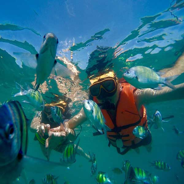 saliing-catamaran-maiton-island-sunset-seeking-dolphin-phuket-7