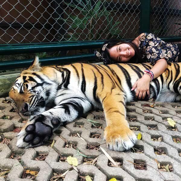 Book-Ticket-Tiger-Kingdom-Phuket-2