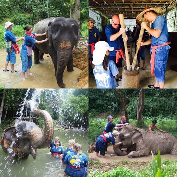 Full Day Elephant Sanctuary Phuket Phang Nga