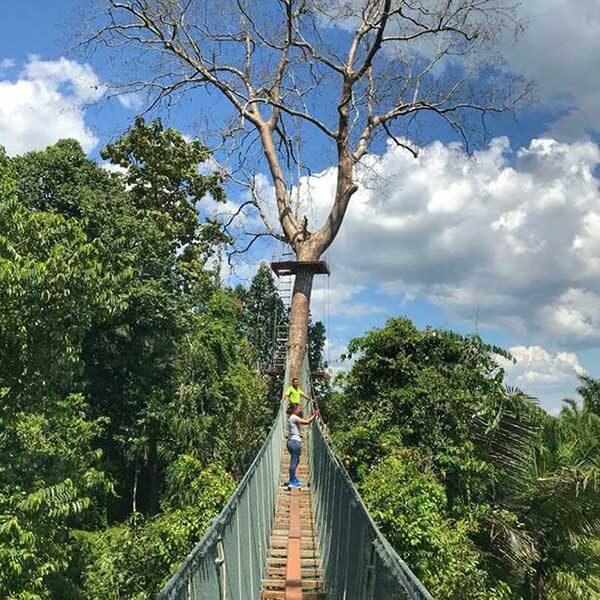 Half-Day-Morning-Afternoon-Tree-Top-Adventure-Park-Krabi