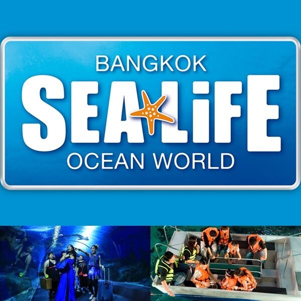 Book Ticket Sea Life Ocean World Bangkok-5