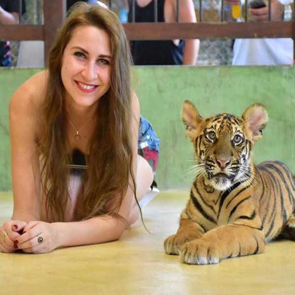 Smallest-Tiger-Kingdom-Phuket-6