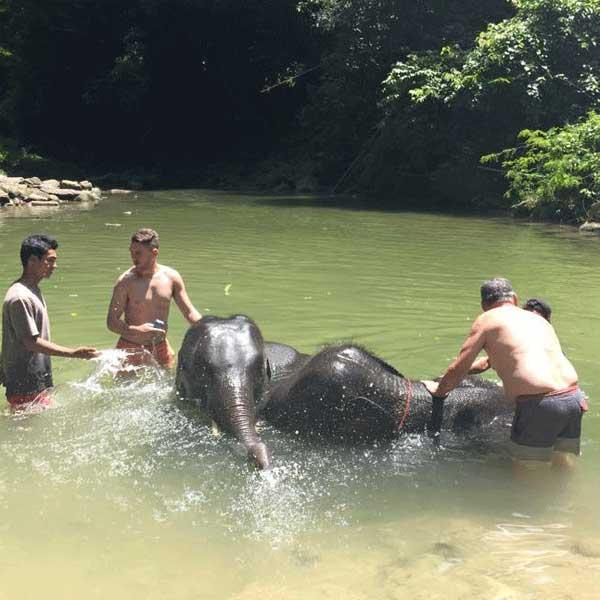 phuket-phang-nga-full-day-learning-elephant-care-9