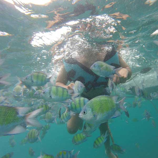 one-day-trip-phi-phi-island-maya-bay-bamboo-island-deluxe-service-speed-boat-phuket-4