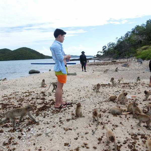 island-trips-koh-pai-koh-rin-kho-man-koh-ped-pattaya-tours-package-9