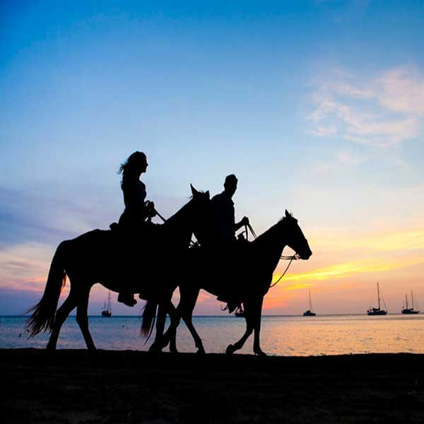 best-fun-family-things-to-do-booking-horse-club-riding-on-the-beach-phuket-2