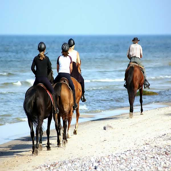 best-fun-family-things-to-do-booking-horse-club-riding-on-the-beach-phuket-4