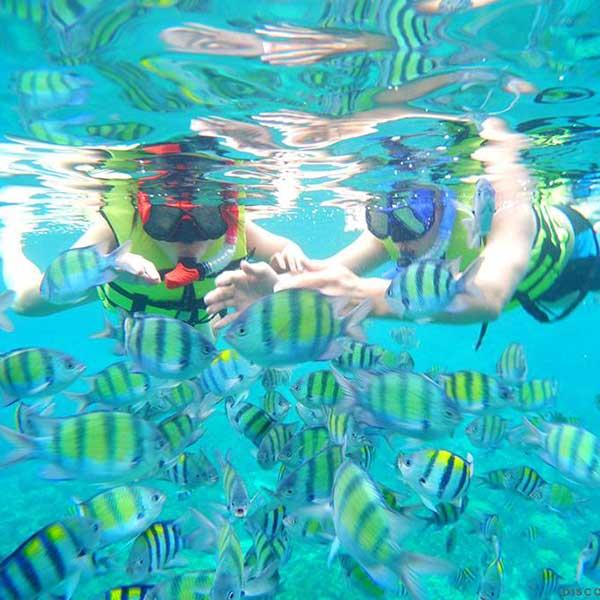 saliing-catamaran-maiton-island-seeking-dolphin-boutique-seafeast-phuket-2