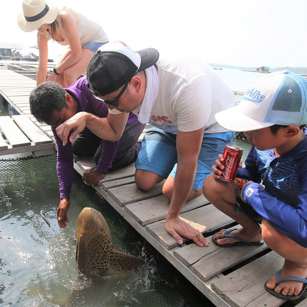local-fish-farm-tour-phuket
