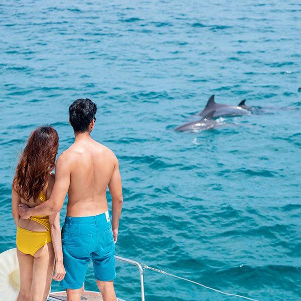 sailing-catamaran-honeymoon-island
