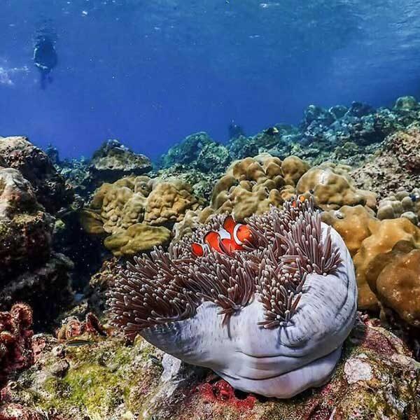 Best-Full-day-Rok-Island-by-catamaran-Phuket