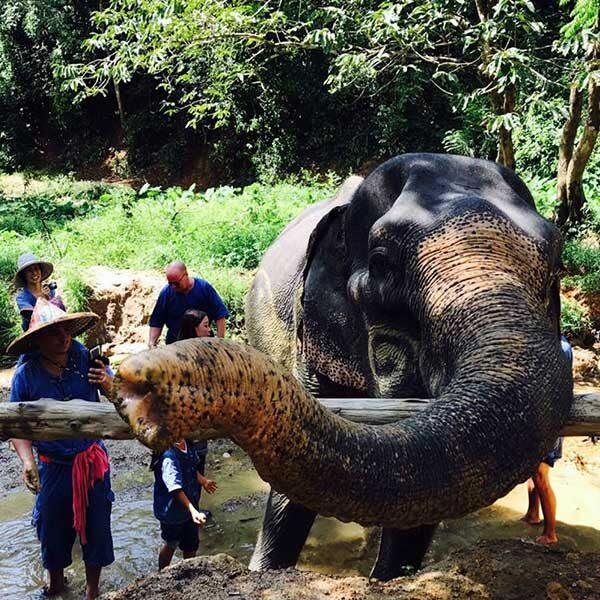 Full-Day-Elephant-Sanctuary-Phuket-Phang-Nga-4