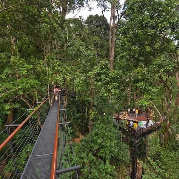 phuket-zipline-adventure-hanuman-world-tree-top-4