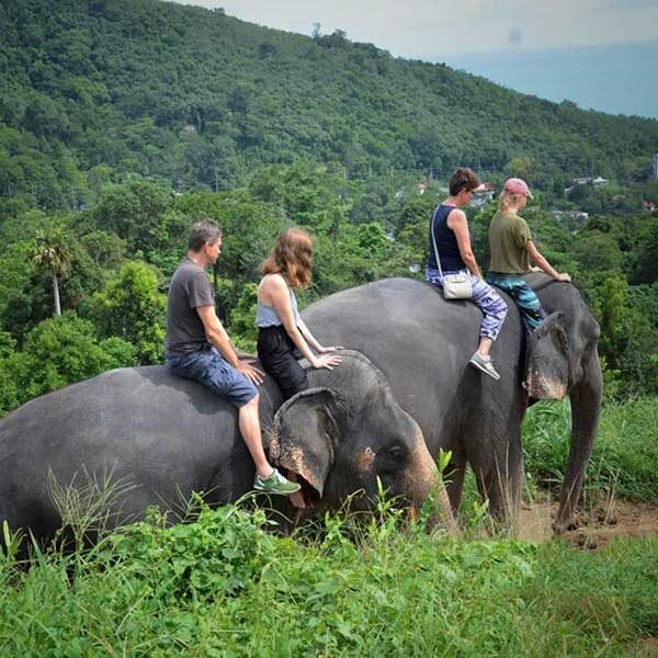 Learn-to-ride-bareback-30-mins-experienced-instructor-Elephant-Phuket-5