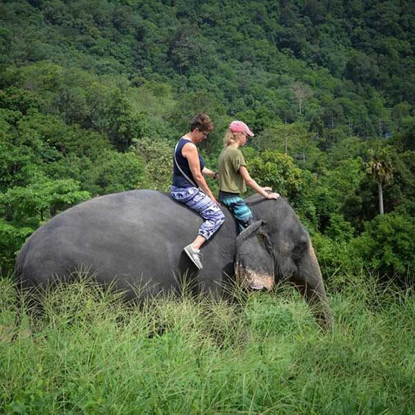 Learn-to-ride-bareback-30-mins-experienced-instructor-Elephant-Phuket-6