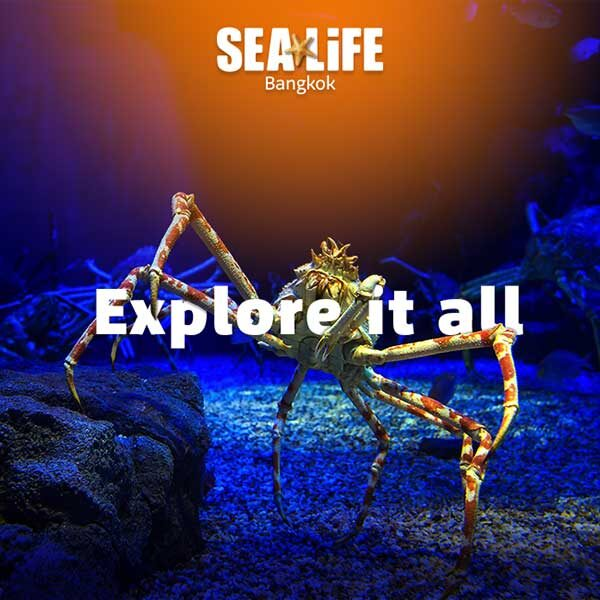 Sea-Life-Ocean-World-Bangkok-Best-Ticket
