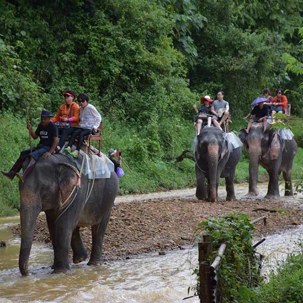 A.-Day-Trip-White-Water-Rafting-Elephant-Trekking-Flying-Fox-5