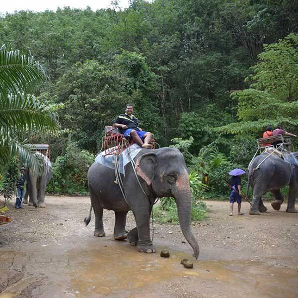 E.-Day-Trip-White-Water-Rafting-Elephant-Trekking-ATV-Flying-Fox-2