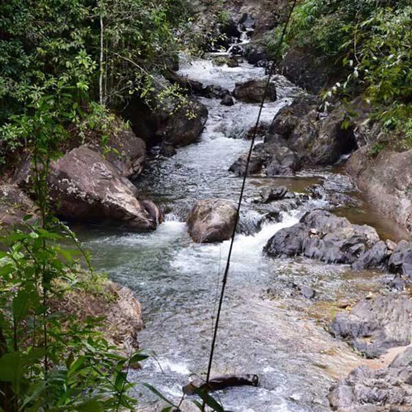 rain-forest-waterfall-phang-nga