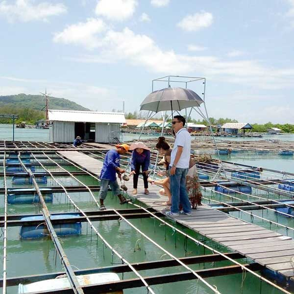 Half-Day-Tour-Phuket-Pearl-Farm-Trip-2