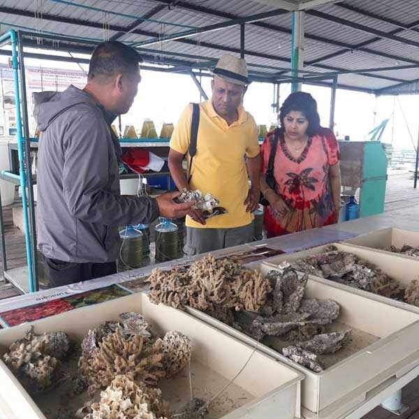 Half-Day-Tour-Phuket-Pearl-Farm-Trip-4