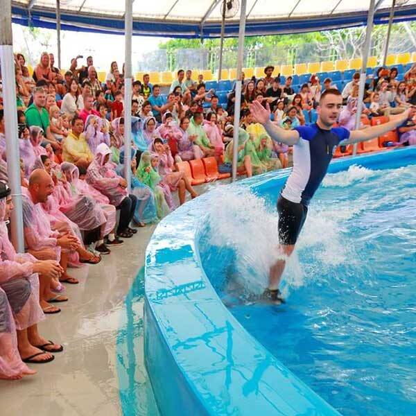 Dolphins-Show-Ticket-at-Nemo-Dolphins-Bay-Phuket-2