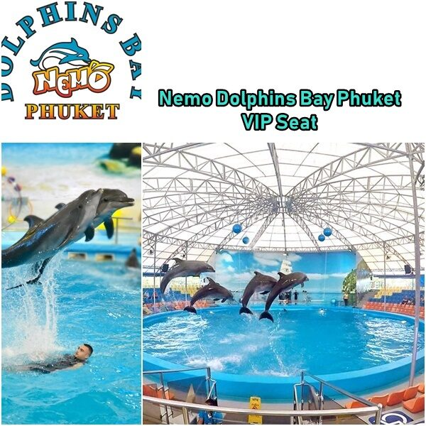 Nemo Dolphins Bay Phuket VIP Seat