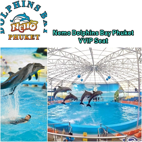Dolphins Show VVIP Seat Ticket at Nemo Dolphins Bay Phuket -