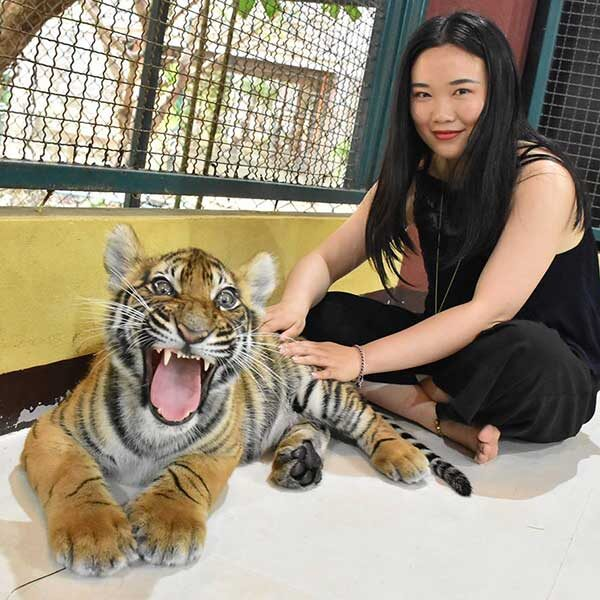 Small-Tiger-Kingdom-Phuket-4