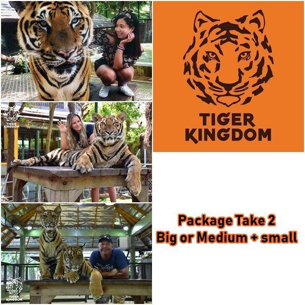 package 2 big medium small tiger kingdom phuket
