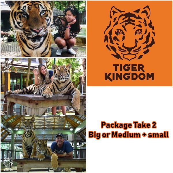 package 2 big medium small tiger kingdom phuket