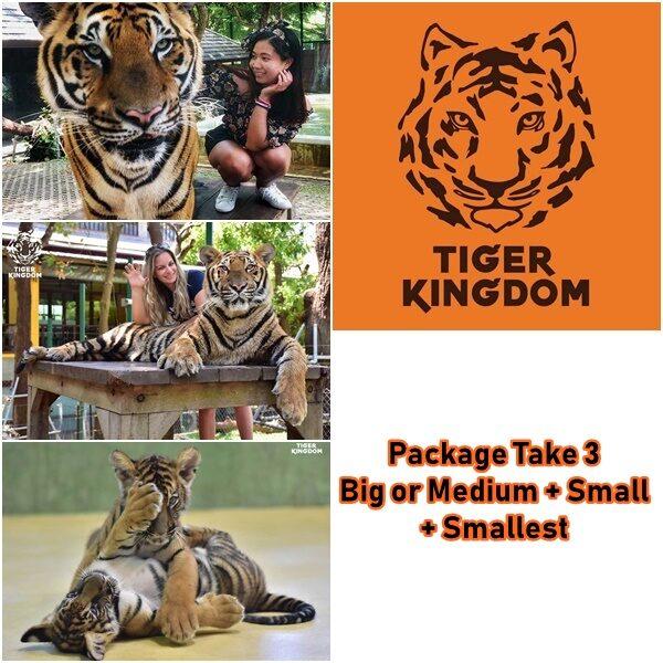 package take 3 tiger kingdom phuket