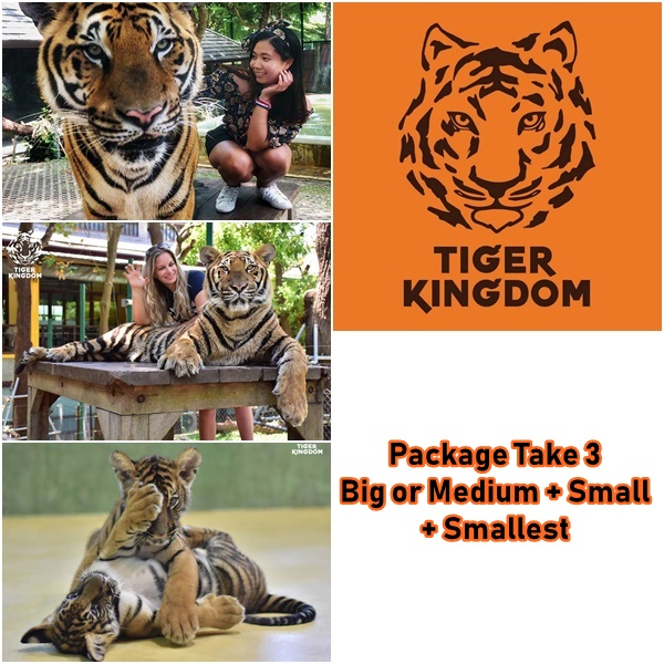 package take 3 tiger kingdom phuket