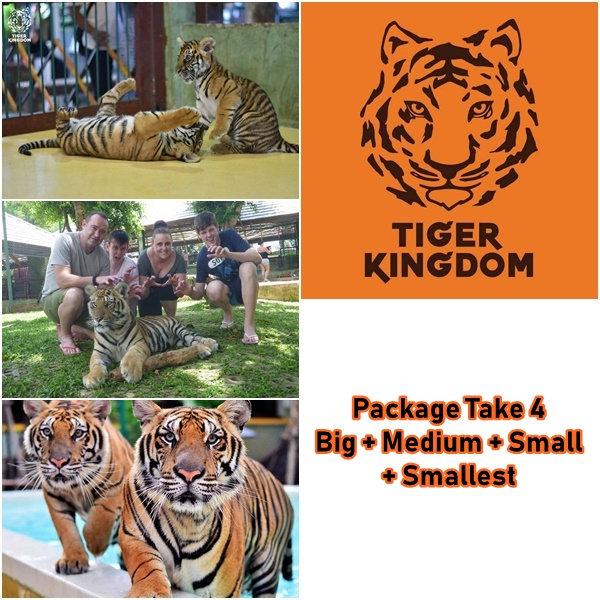 package take 4 tiger kingdom phuket